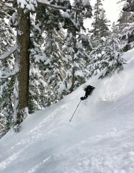 Light powder snow at Tahoe?