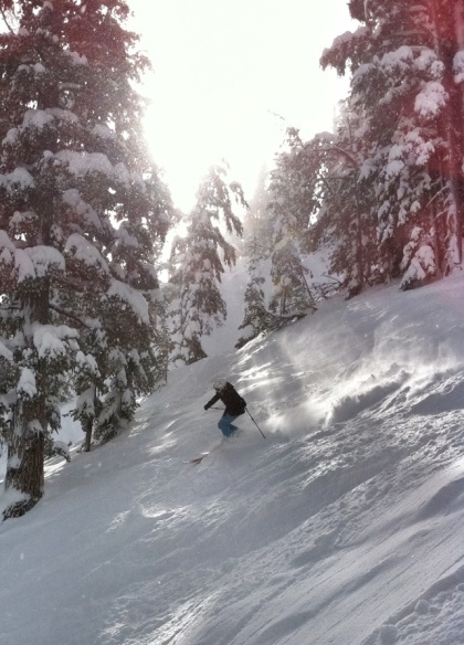 Tree skiing at Heavenly