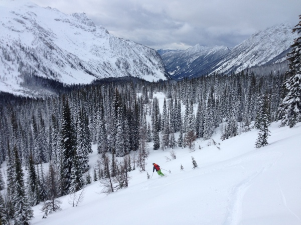 Skier in Powder Creek Drainage, Purcells